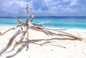 Йога тур на Мальдивы от проекта #yoga_method. 21 - 31 октября.